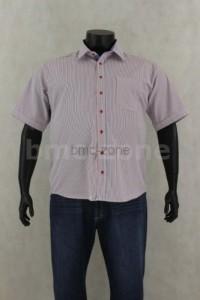 duże rozmiary koszul