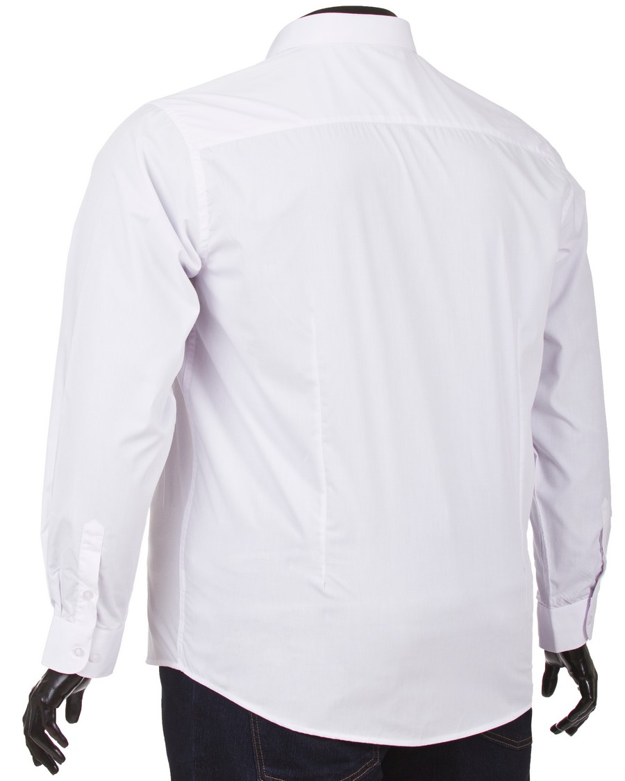 Koszula męska New Biandly BMC