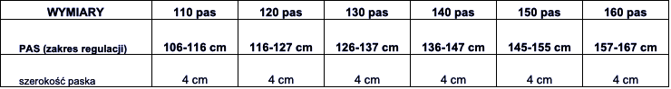 pasek tabela wymiarów