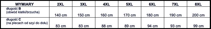 tabela wymiarów t-shirt ESPIONAGE